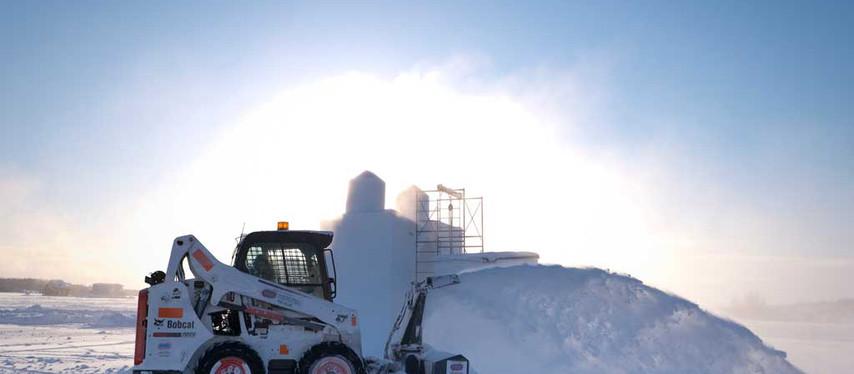 Les Snowbuddies gardent le fort