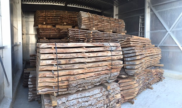 Kiln dried elm 2inch boards.jpg