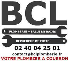 BCL2.jpg