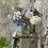 Thumbnail: Hydrangea Quart