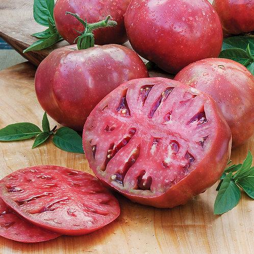 Tomato, Cherokee Purple 3.5 square pot