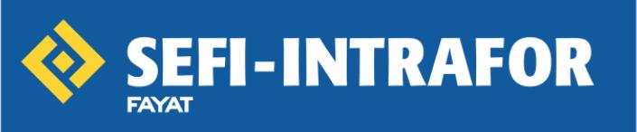 Logo sefi - intrafor.PNG