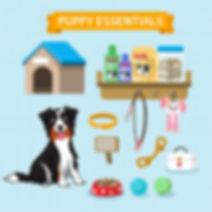 Puppy Essentials Vector.jpg