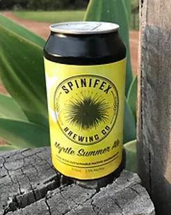 SPINIFIX-BEER.jpg