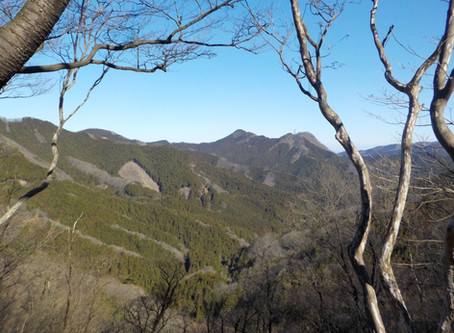 奥武蔵 横見山~丸山 2020.3.25