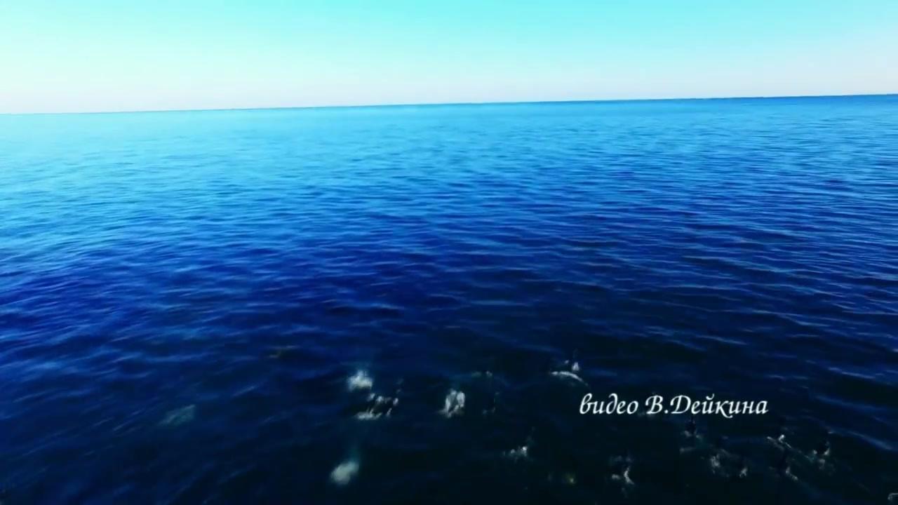 Flight over the island of Sakhalin