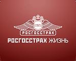 imagen-kalkulyator-strahovaniya-zhizni-0