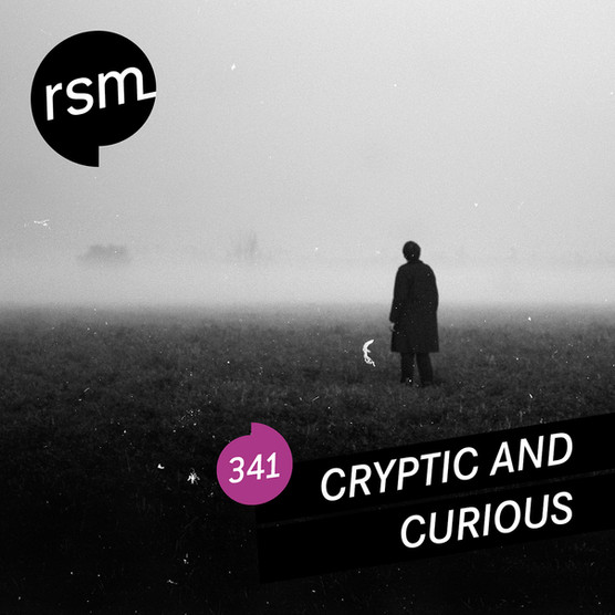 RSM341 Curious & Cryptic