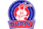 logotipo bunny.png