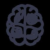brain (1).png