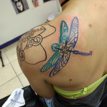 Dragonfly Color Lines