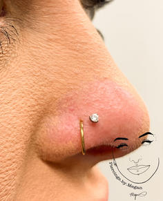 Nostril with Titanium 3mm Clear Prong
