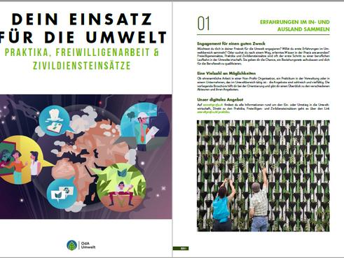 Dein Einsatz für die Umwelt - Praktika, Freiwilligenarbeit & Zivildiensteinsätze