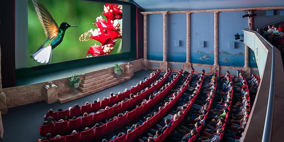 Filme für die Erde Festival 2021