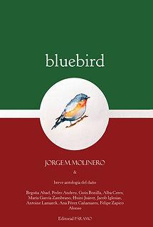 Bluebird Portada.jpg