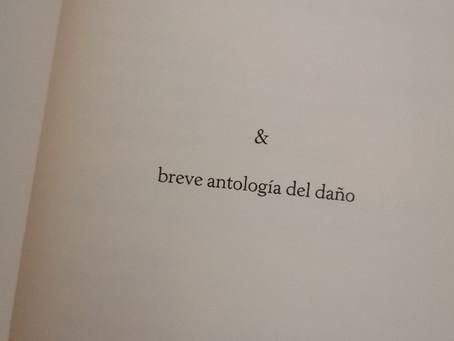 Bluebird, el nuevo poemario de Jorge M. Molinero. Y no viene solo...