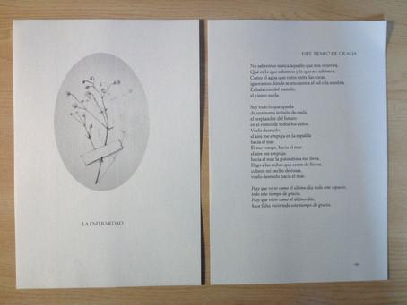 'Los arrecifes de la esperanza', de Alexandre Lacaze, sale al mercado