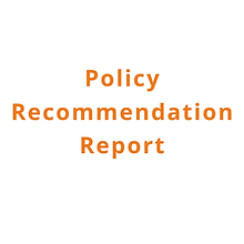 Policy Recommenadation Report