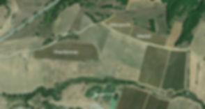 Argyriou Vineyards 3.jpg
