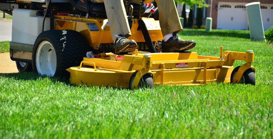 Weed Control & Mowing