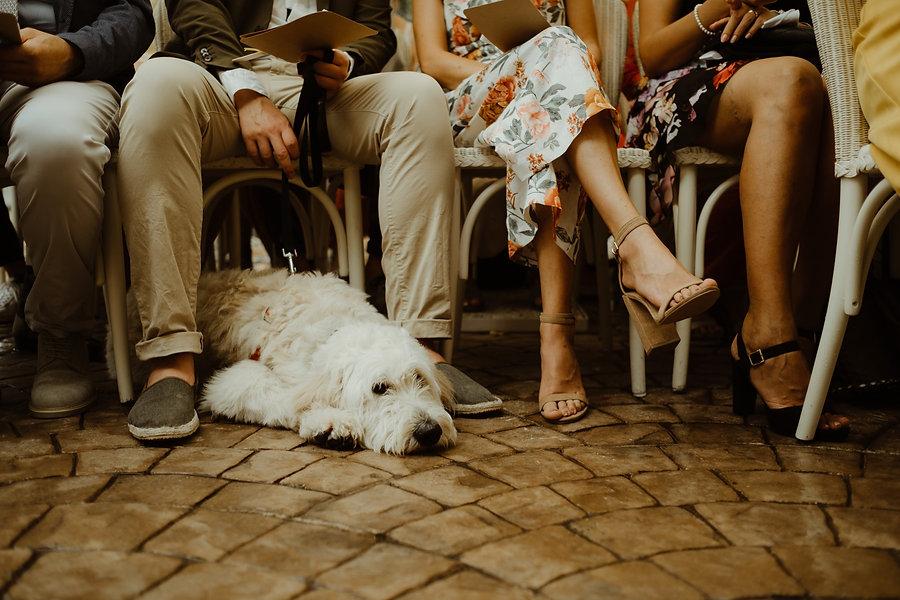 50_XTWI6259_germanwedding_cefalu_wedding