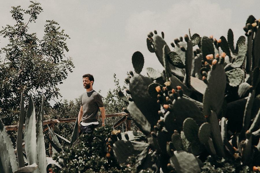 09_OT2A7401_groom,_cactus,_sicily,.jpg