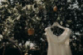 03_XPR28878_sicily,_lemon,_weddingdress,