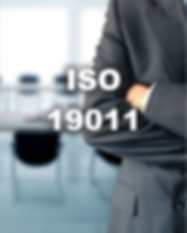 ISO 19011 WIX.png