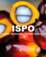 ISPO (INDONESIAN SUSTAINABLE PALM OIL).p