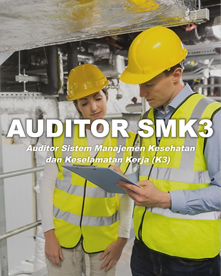 AUDITOR SMK 3.png