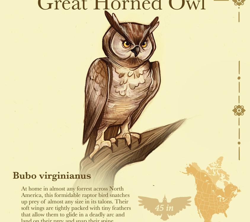 Birder pdf13.jpg