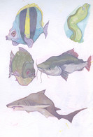 Gouache in Sketchbook   Erin McGowan 540-425-4950 emcgowan@c.ringling.edu