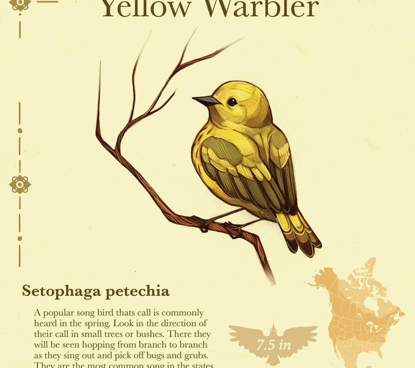 Birder pdf16.jpg