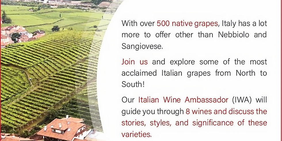 Mastering the Indigenous Grapes of Italy