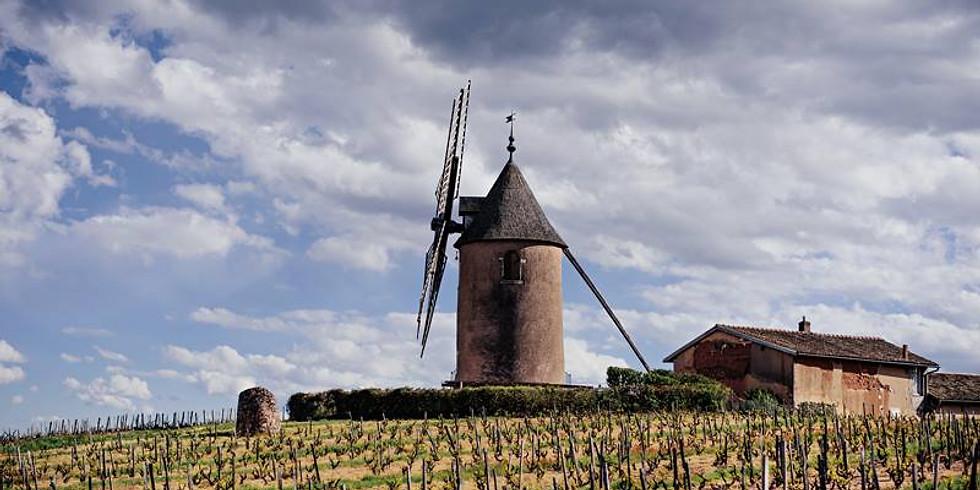 Masterclass: Château du Moulin-à-Vent 'Champ de cour' Vertical
