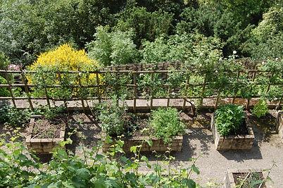 jardin 2 tours.JPG