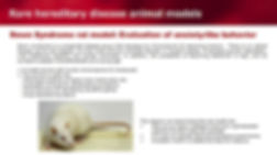 Rare hereditary disease animal models_1.