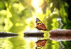 massagepraktijk Achterhoek,massage Achterhoek,  Massen in Gaanderen, Achterhoek