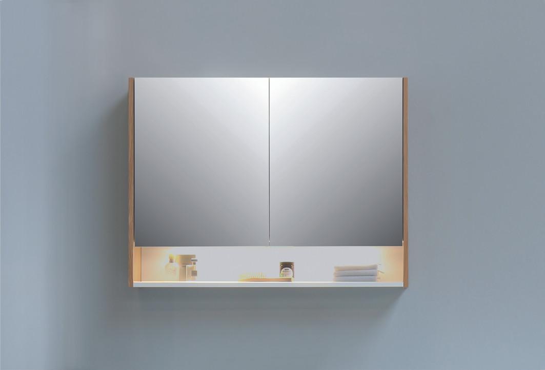spiegelkast SPK 3 (2).jpg