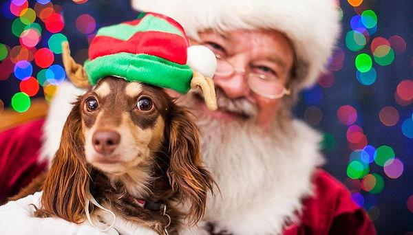 pets pics with santa.jpg
