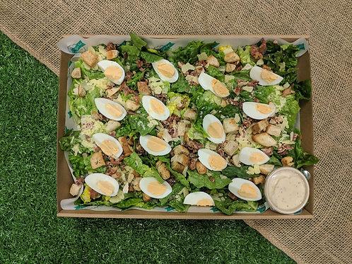 Salad 'n' Caeser