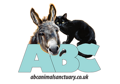 ABC logo PNG.png