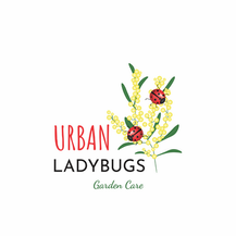 Urban Ladybags
