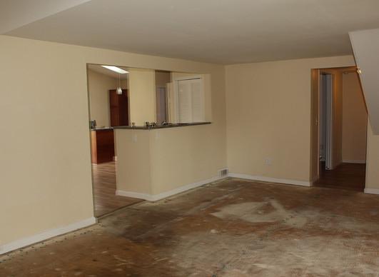 Living room 1b.jpg