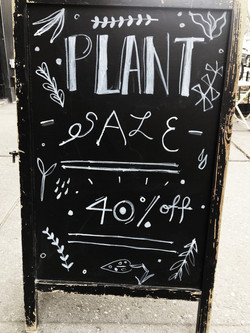 plant sign 2