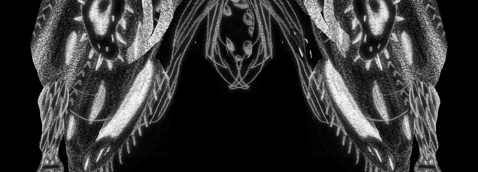 Polycephaly