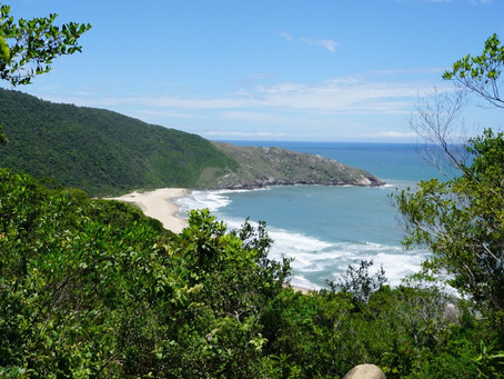 A Digital Nomad's Guide to Living & Working in Florianopolis Brazil