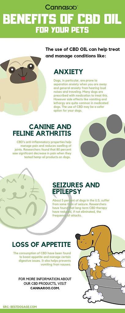 Pet Infographic.jpg