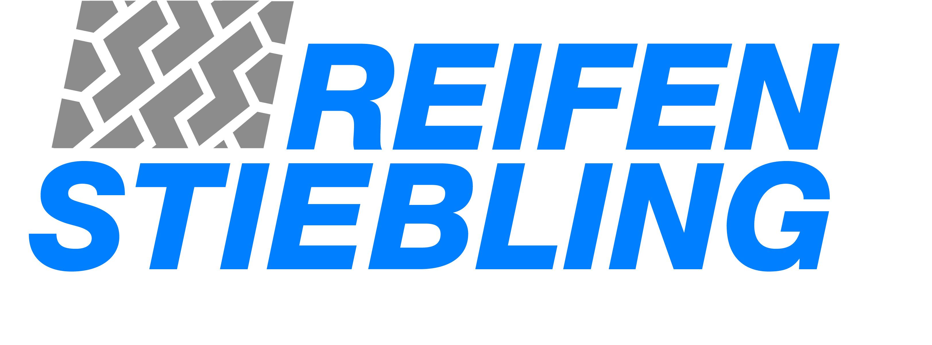 Logo_Stiebling_4c__1__09
