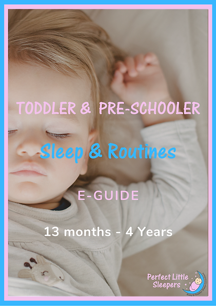 Toddler guide front cover.png